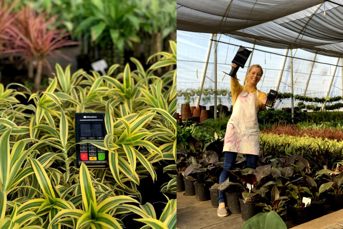 The Greenhouse Shop: Where Plants Go To Grow