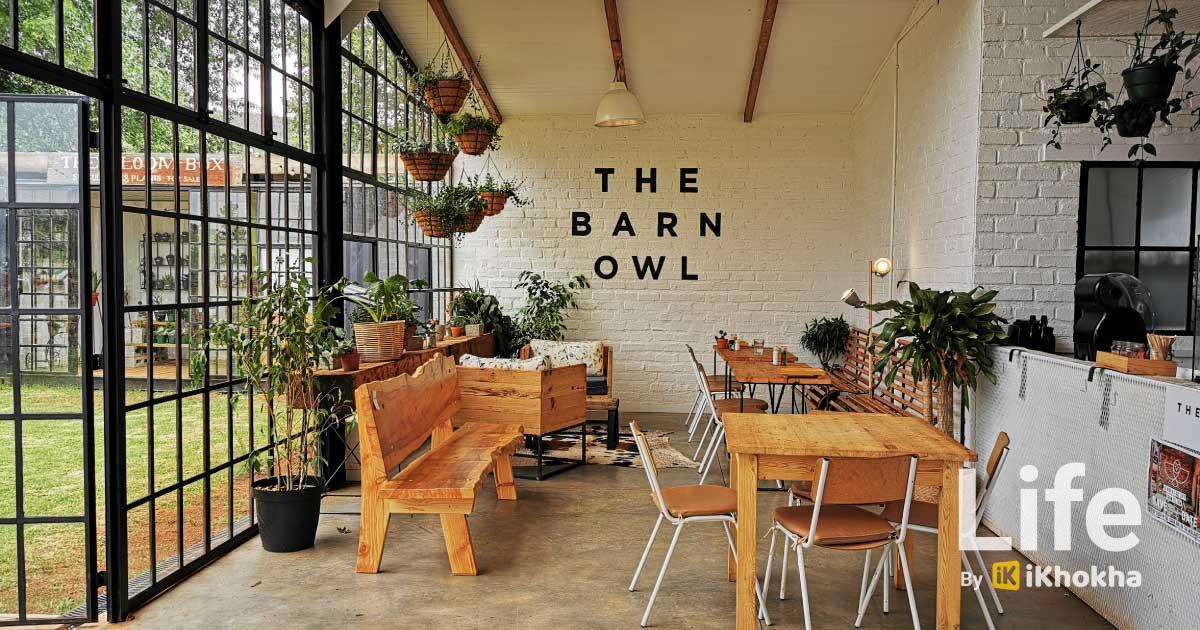 the-barn-owl